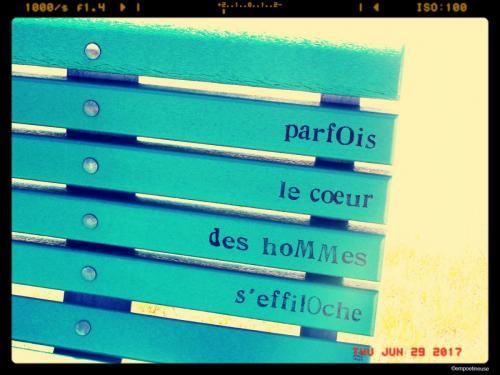 Bancs publics poétiques - - Jardin Alphonse Jeannotte- Beloeil 7©empoetineuse (13)